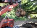 Trattori forestali Foto0511