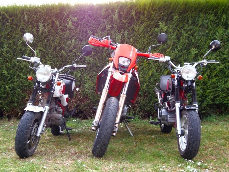 Gros mono versus mini mono P4011711