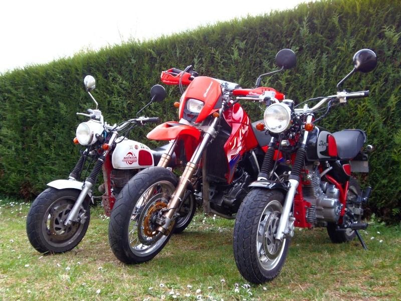 Gros mono versus mini mono P4011713