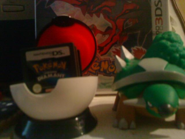 Pokémon X, Pokémon Y: Les Pocket Monsters en 3D pour octobre! Dsc01010