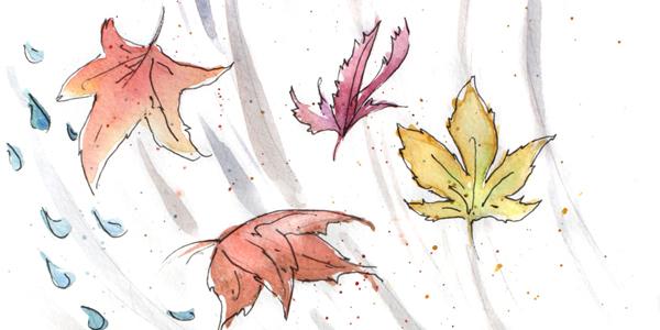 Le Stagioni - Pagina 3 Autumn10