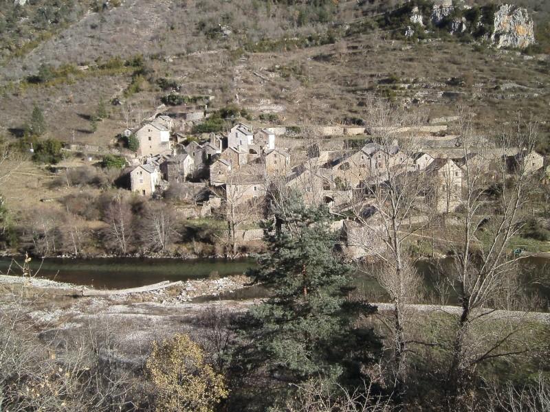 Les Gorges du Tarn en décembre. - Page 7 05010
