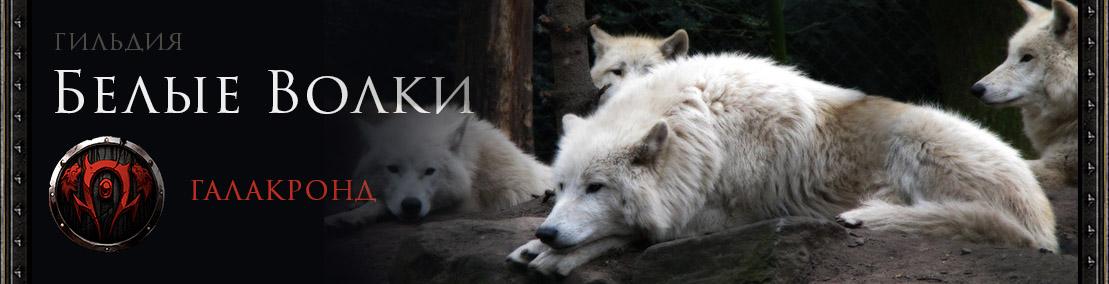 Гильдия Белые волки