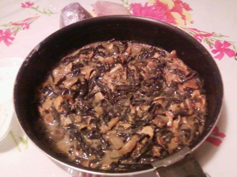 champignons trouvé par moi (coutolien) ... - Page 2 B_211