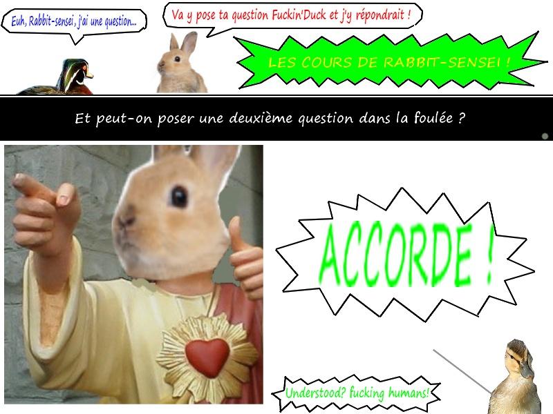 Les cours grandiose de Rabbit-sensei ! Les_co13