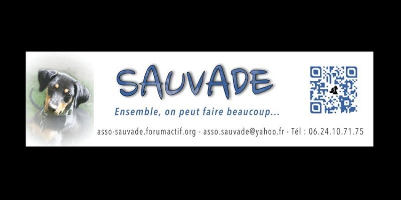 Boutique 2013/2014 au profit de Sauvade Catalo18