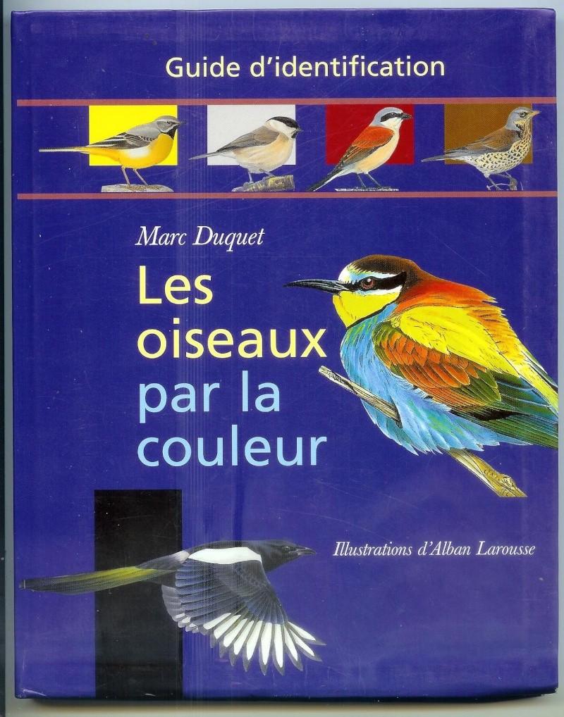 Un site sur les oiseaux... Image10