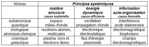 Philosophie holistique et modèle systémique - Page 2 Systam10