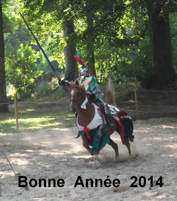 LA BONNE ANNEE Bonne_12