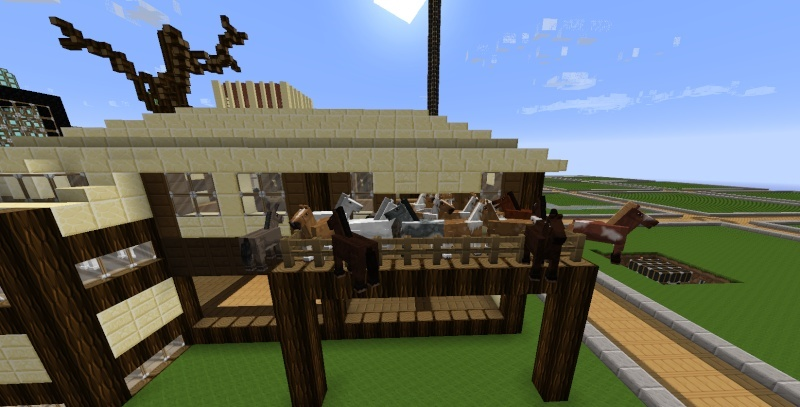Funny Server Pictures - Page 4 Horse11