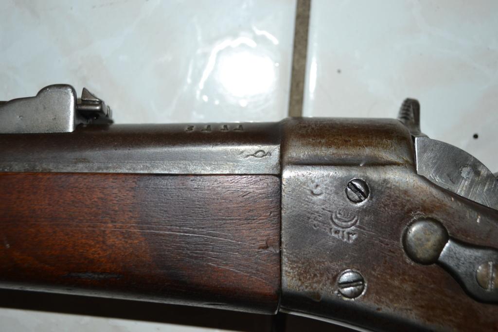 Remington Egyptien ?? Dsc_0101
