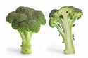 chou choux chou... Brassica oleracea Brassi11