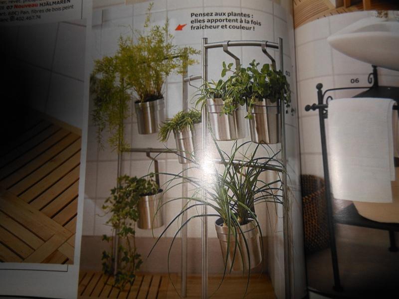 Le jardin vertical. Créer un mur végétal. 00111
