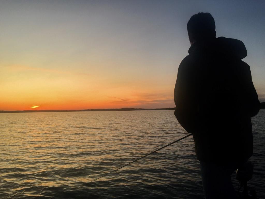 Le voilà- Suède 2019- un mois intense dans la nature Lapone 87528510