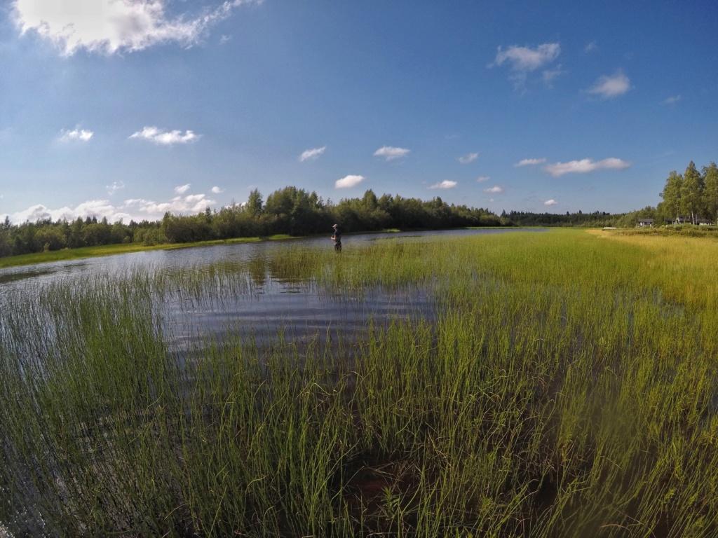 Suède 2018: un mois au paradis... Cymie010