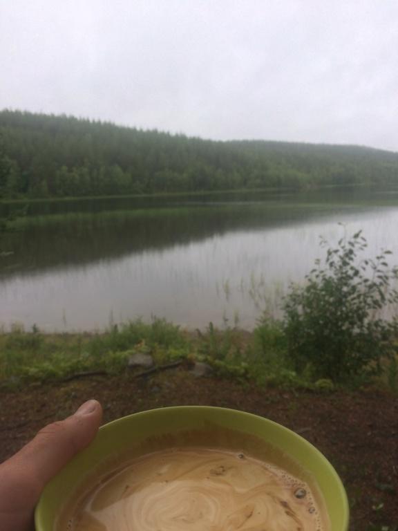Le voilà- Suède 2019- un mois intense dans la nature Lapone Img_3510