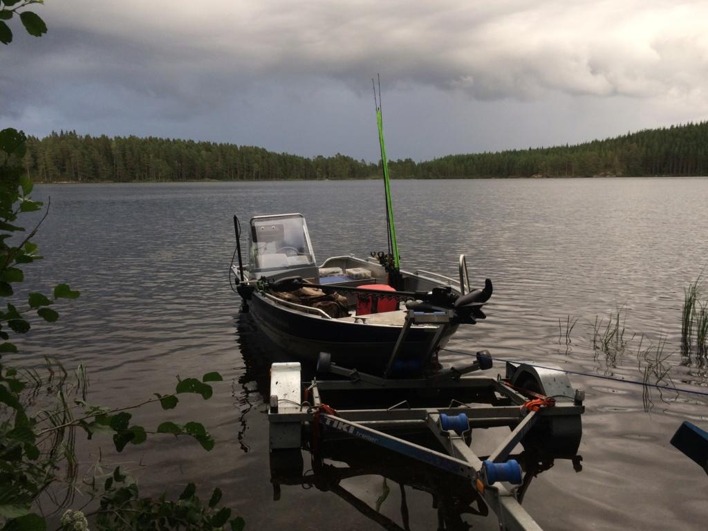 Le voilà- Suède 2019- un mois intense dans la nature Lapone Img_3617