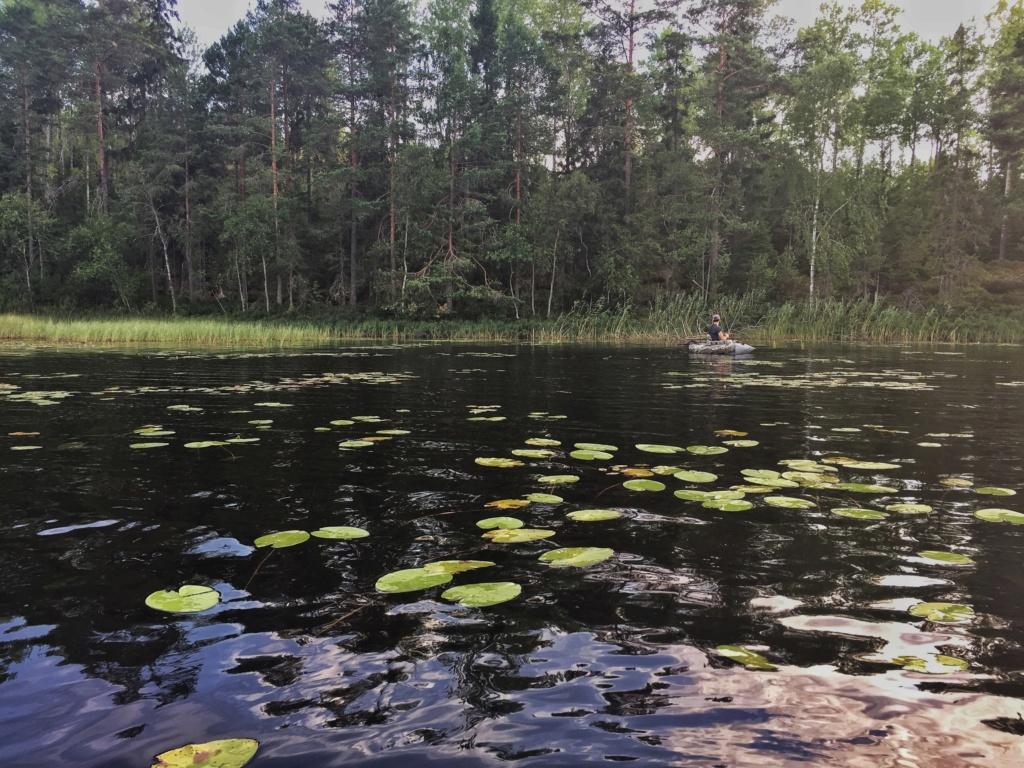 Suède 2018: un mois au paradis... Img_6819