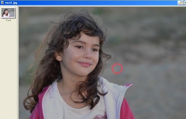 Recadrer et corriger une photo avec les plugins de Photofiltre. Pgris10