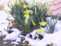 concours 12 paysages féériques d'hiver Jonqui10