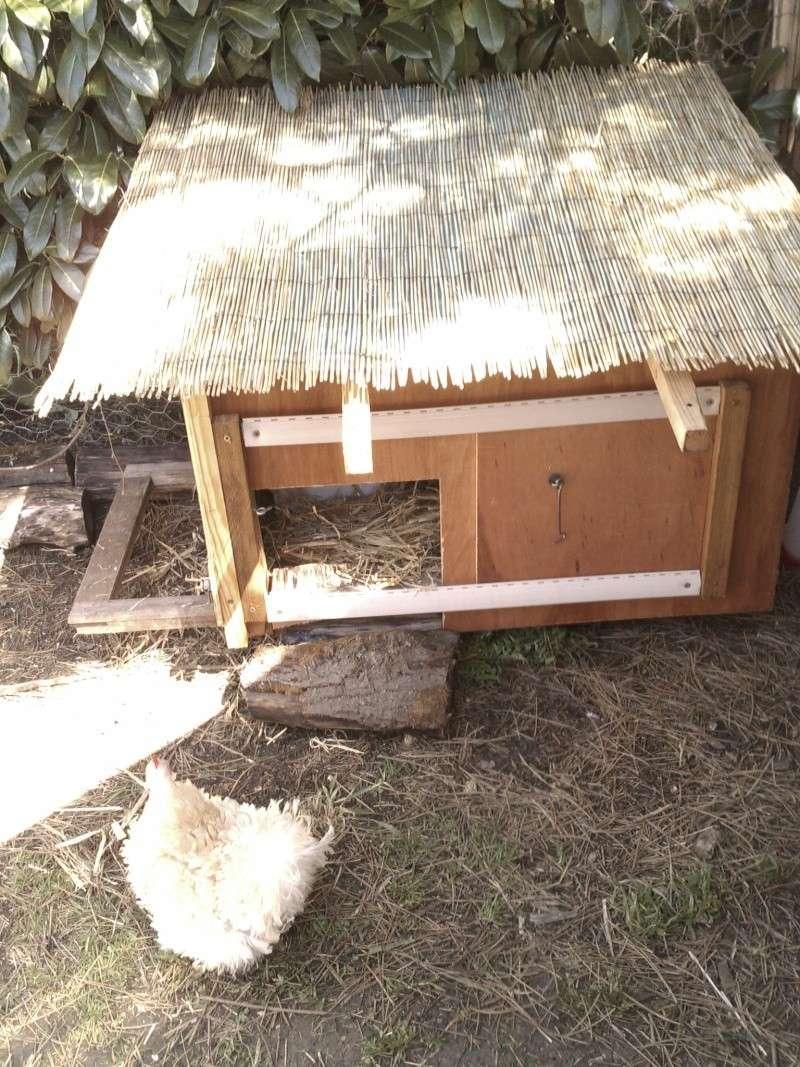 besoin d'idées pour fabriquer un ruisseau dans une volière extérieure. Imag0210