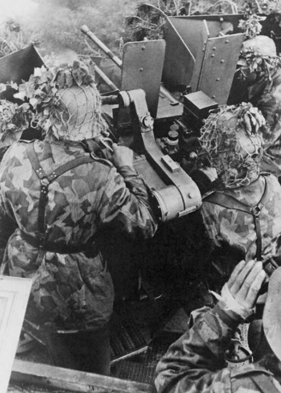 Filet de casque de l'armée allemande 100b1010