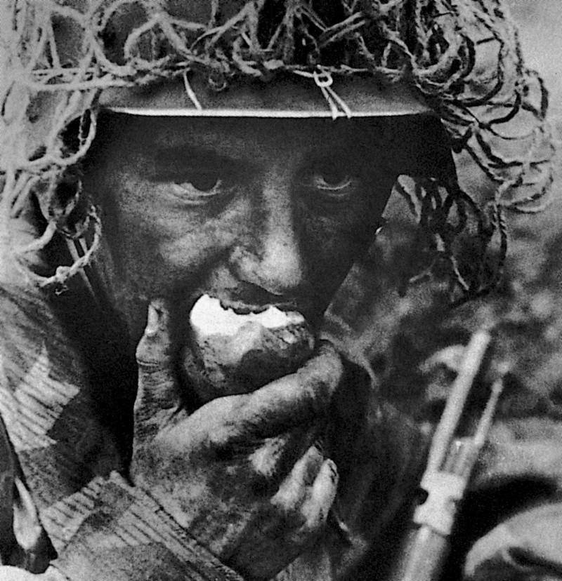 Filet de casque de l'armée allemande 4b1010