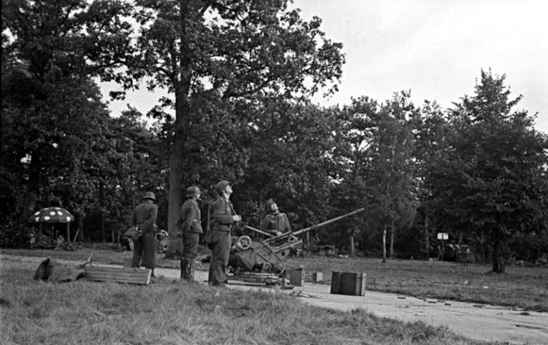 Les troupes de la Luftwaffe lors de la bataille de Market Garden 52511