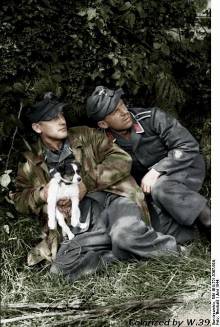 La Luftwaffe en couleurs ! 8b11