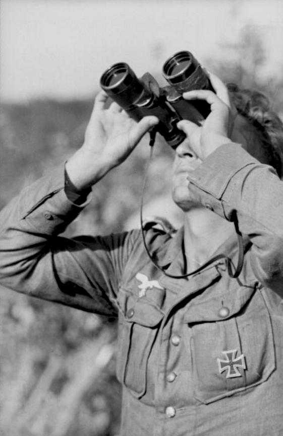 Les différentes vareuses de la Luftwaffe Ftgjf11