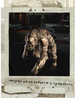 02. Файлы Resident Evil 5_dynd10