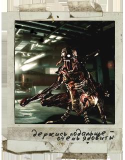 02. Файлы Resident Evil 6_dydd10