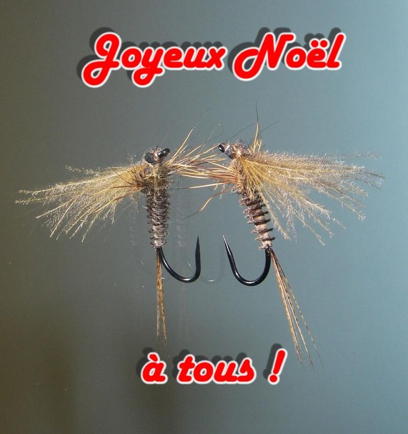 Echange de Décembre : mouche d'Ornans - Page 5 Mbs85210