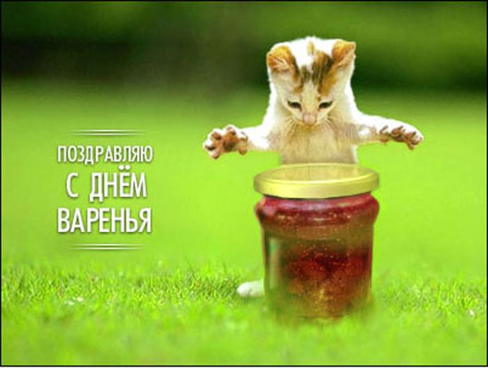 День рождения Анатолия Савченко Ddudno10