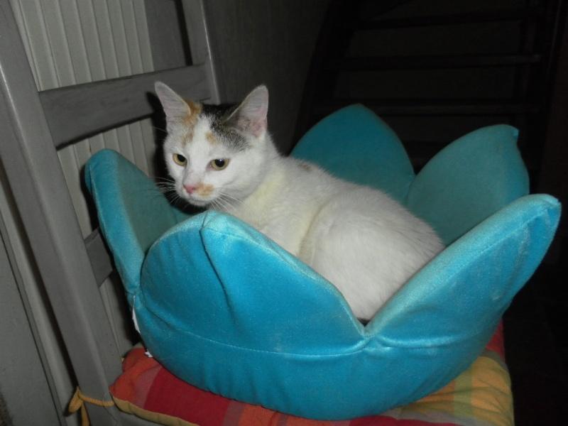 Poussy - 7 mois - 12-04-11