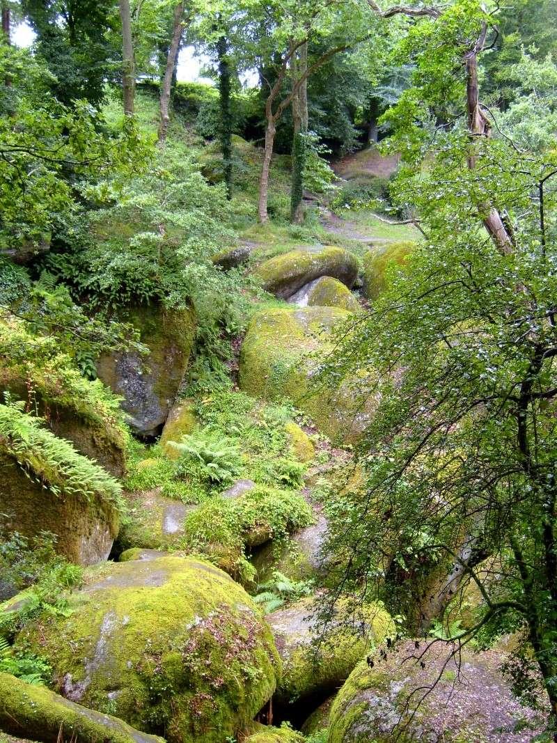 Forêt d'Huelgoat S7002610