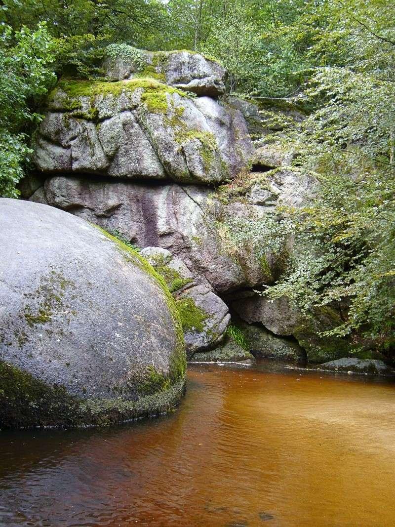 Forêt d'Huelgoat S7002613