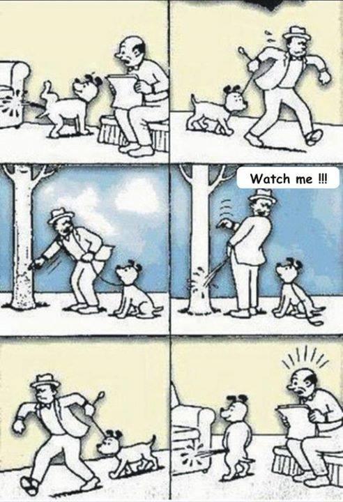 Foto Humoristike - Faqe 7 Qeni10