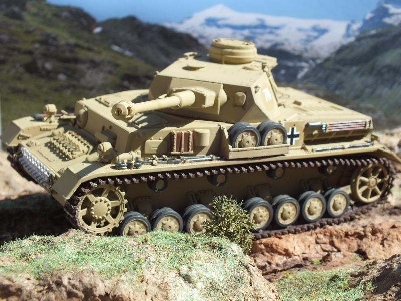 Panzer IV ausf G Dragon 1/35 - Page 3 Dscf4210