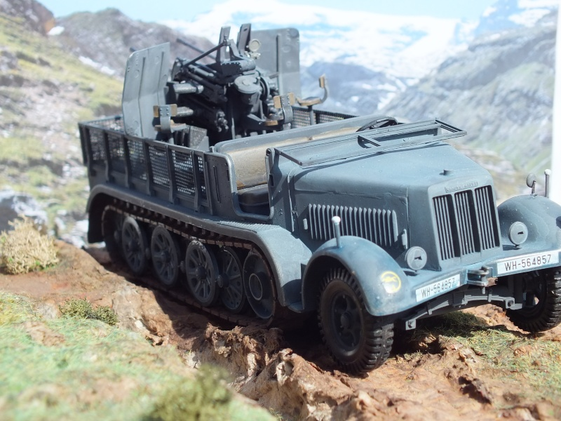 Sdkfz 7/1 tamiya 1/35 FINI Dscf4316