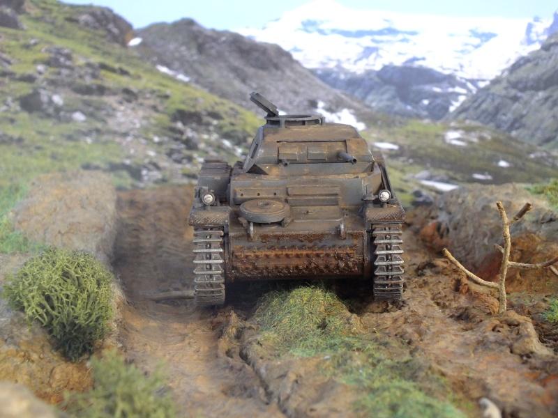 Panzer II ausf .F Tamiya 1/35 : FINI - Page 2 Dscf4627