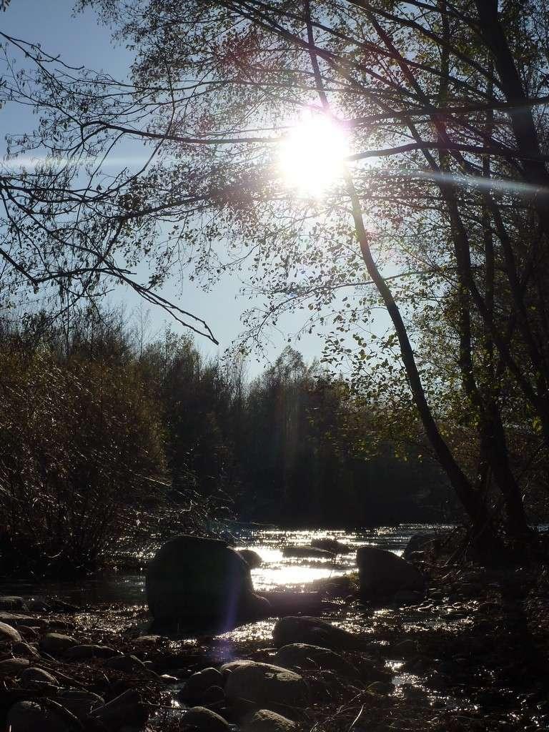 Et au milieu coule une rivière...... - Page 3 L2013113