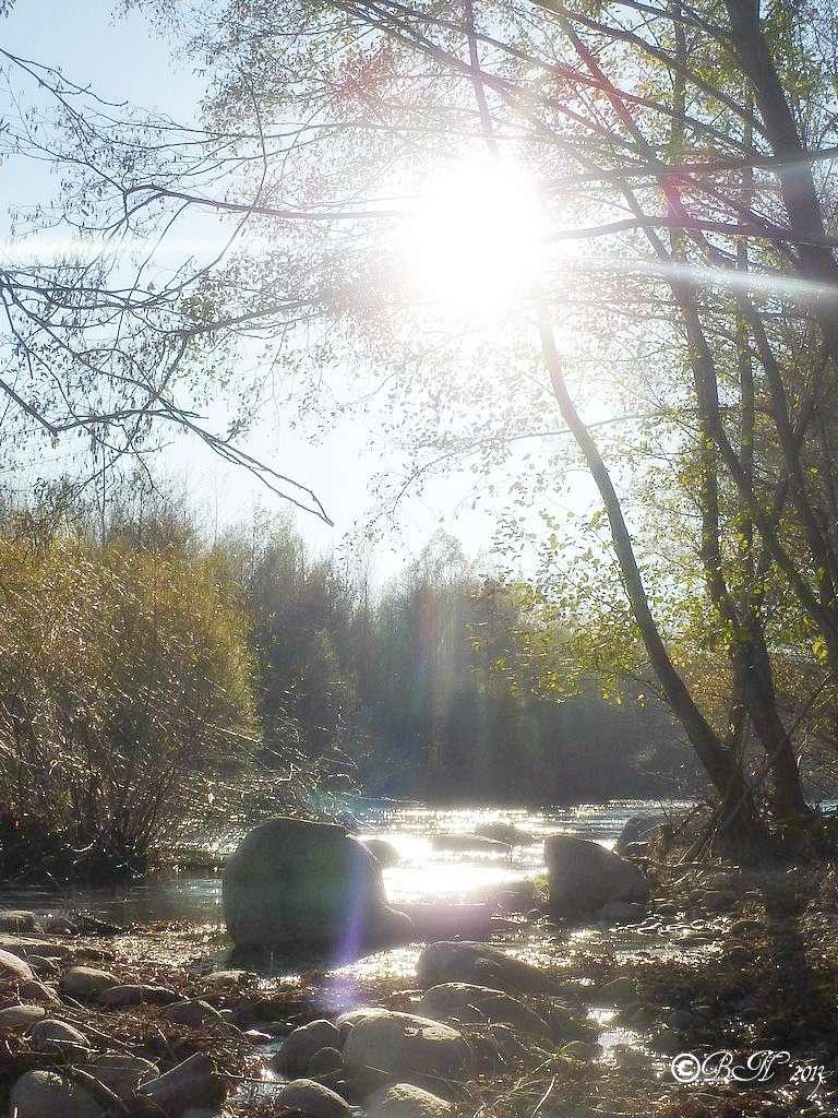 Et au milieu coule une rivière...... - Page 3 L2013114