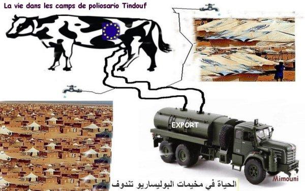 Visite perilleuse a Tindouf  زيارة محفوفة بالمخاطر الي تندوف Mimoun39
