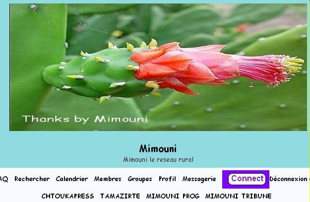 إنفجر الإعلام  في شتوكة أيت بها بفضل شبكة سوس Mimoun45