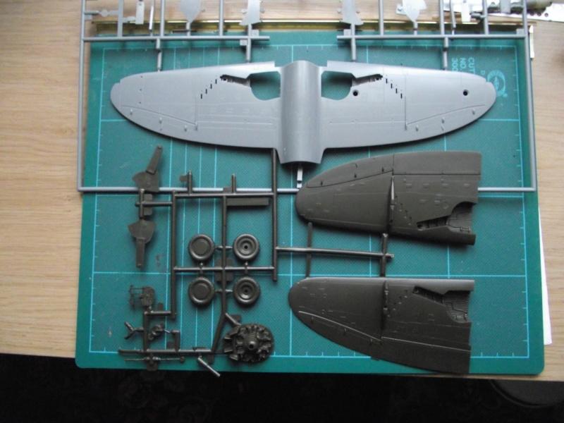 "P-47D THUNDERBOLT ""RAZOR"" 0910"