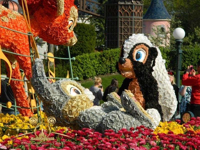 Festival du printemps 2014 (Disneyland Park) - Page 11 Dscn5311