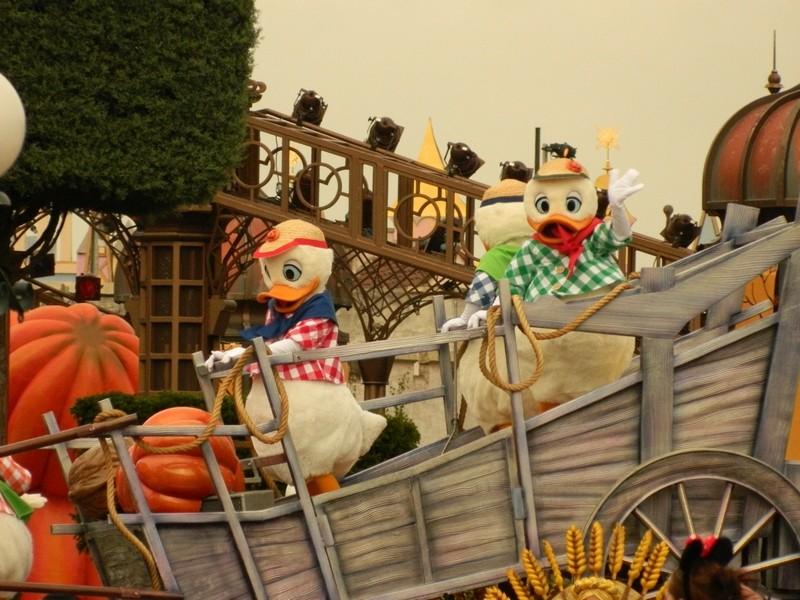 La Célébration Halloween de Mickey (2013) Dscn7034