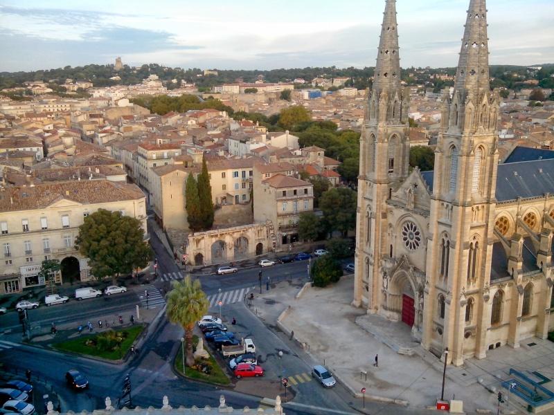 nouveau venu du sud de la France - Page 3 Img_2014