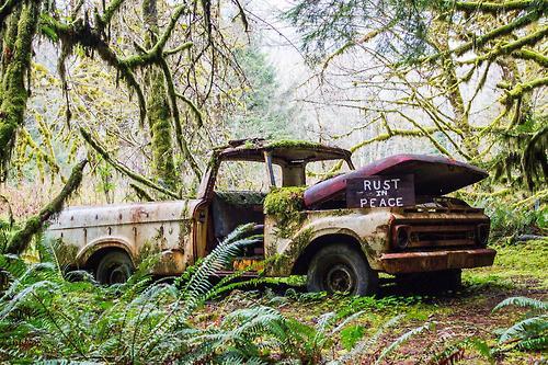 rust  - Page 9 Tumbl341